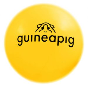 Guineapig floating thought bubble